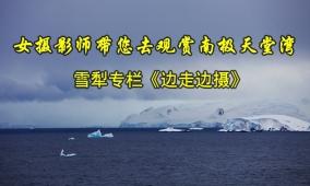 女摄影师带您去观赏南极天堂湾