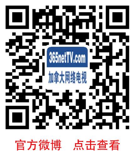 weibo365