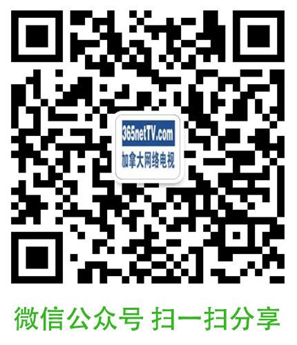 weixin365